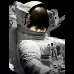 Man on the moon: astronaut careers