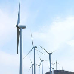 Green power is good for jobs