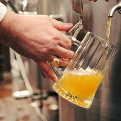 Turn beer into a career