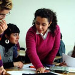 Higher education reform