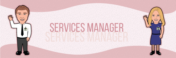 Services manager salaries