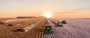 Agriculture: What does the future hold?